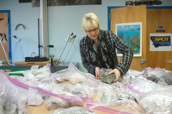 Montana Hodges unpacks coral reef fossils after a recent trip to Alaska.