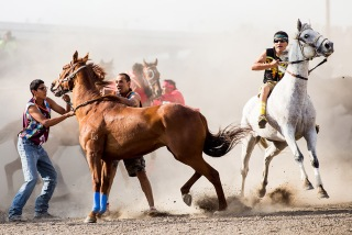 Pictured: a winning photo from Frost's portfolio. Pikunii Express team members try to gain control of one of their horses as a member of team whitecap takes off  during the Indian Relays at the North American Indian Days in Browning, Montana on July 11, 2015.  Photo by Evan Frost